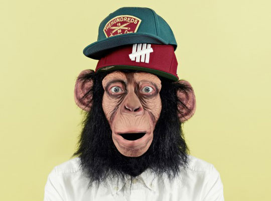 chimpstore-cap-lookbook-1