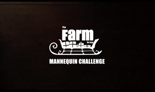 farm group- mannequin challenge lit